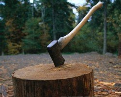 Виталий Кличко строит деревянную «мега-виллу»