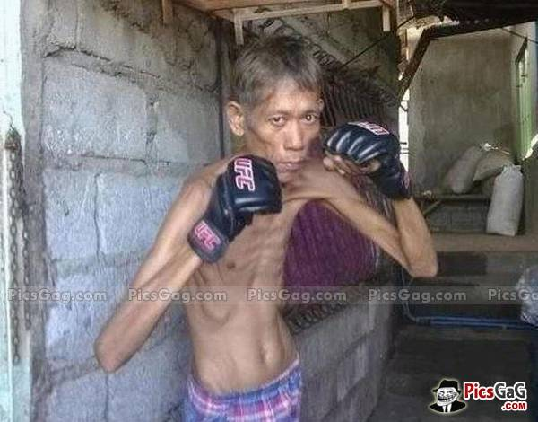 funny boxing of funny boxer
